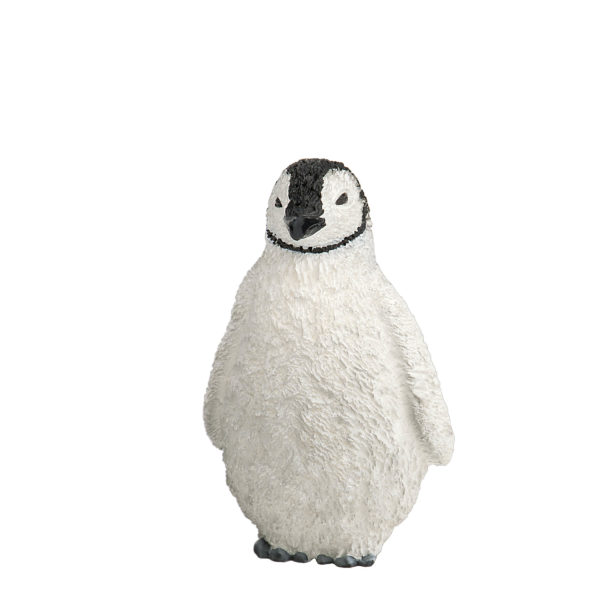 front view adult penguin