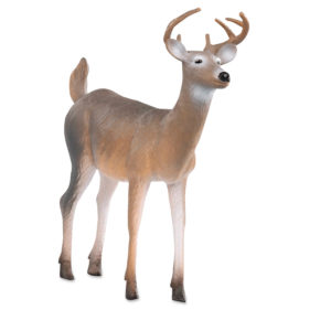 side view of white tailed buck