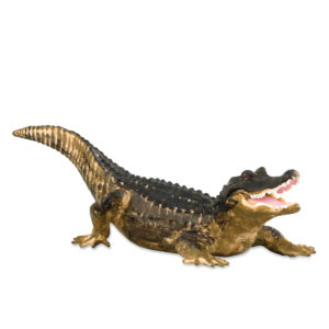 side view of alligator