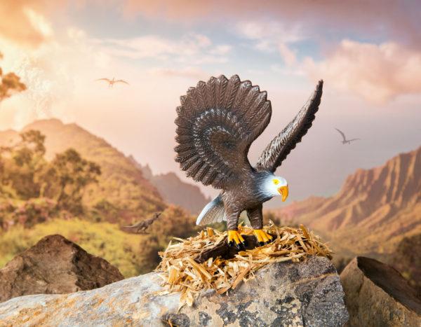 eagle in a mountain setting