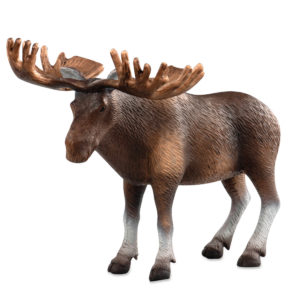 side view of a moose