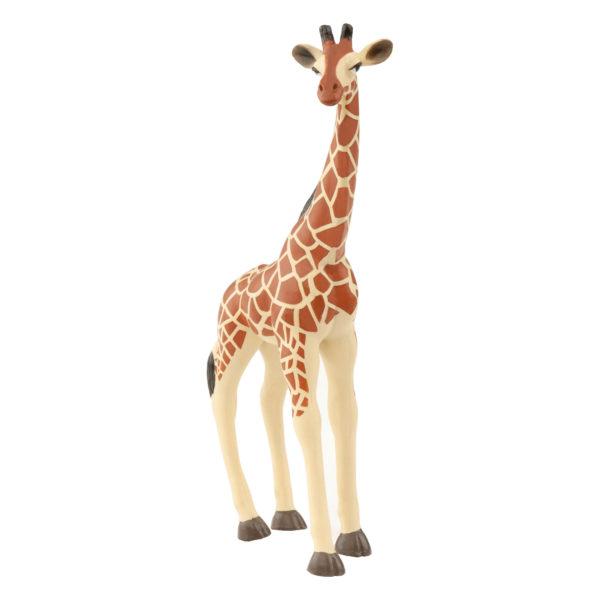front view of a giraffe