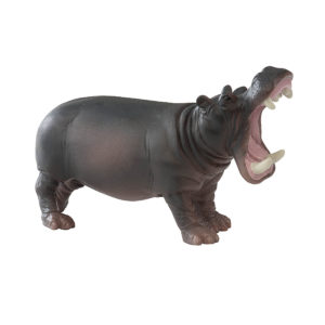 side view of hippo