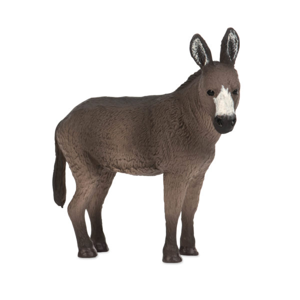side view of a donkey