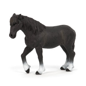 side view of a Percheron
