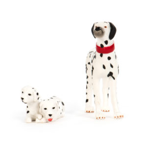 front view of dalmation and puppies