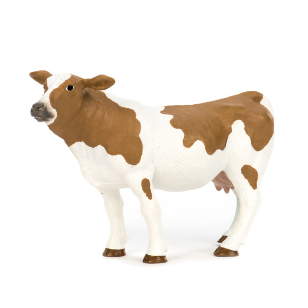 side view of Holstein cow