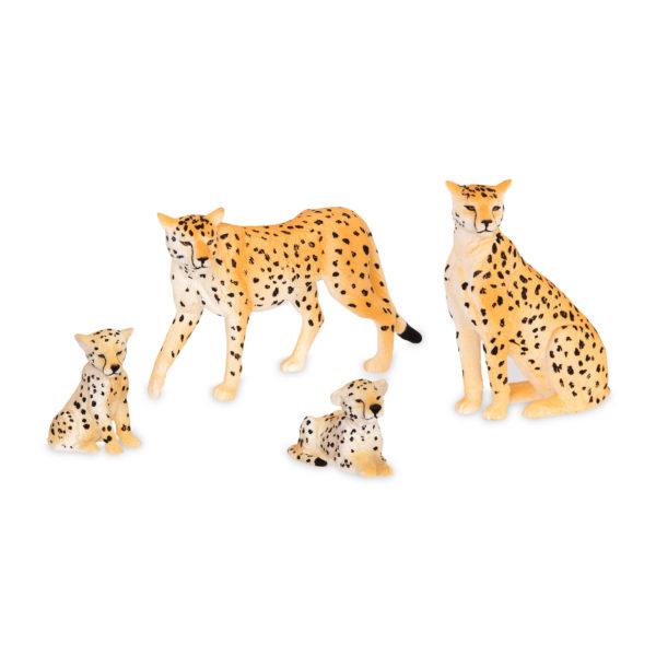 cheetah