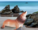 sea lion on beach with rocks.